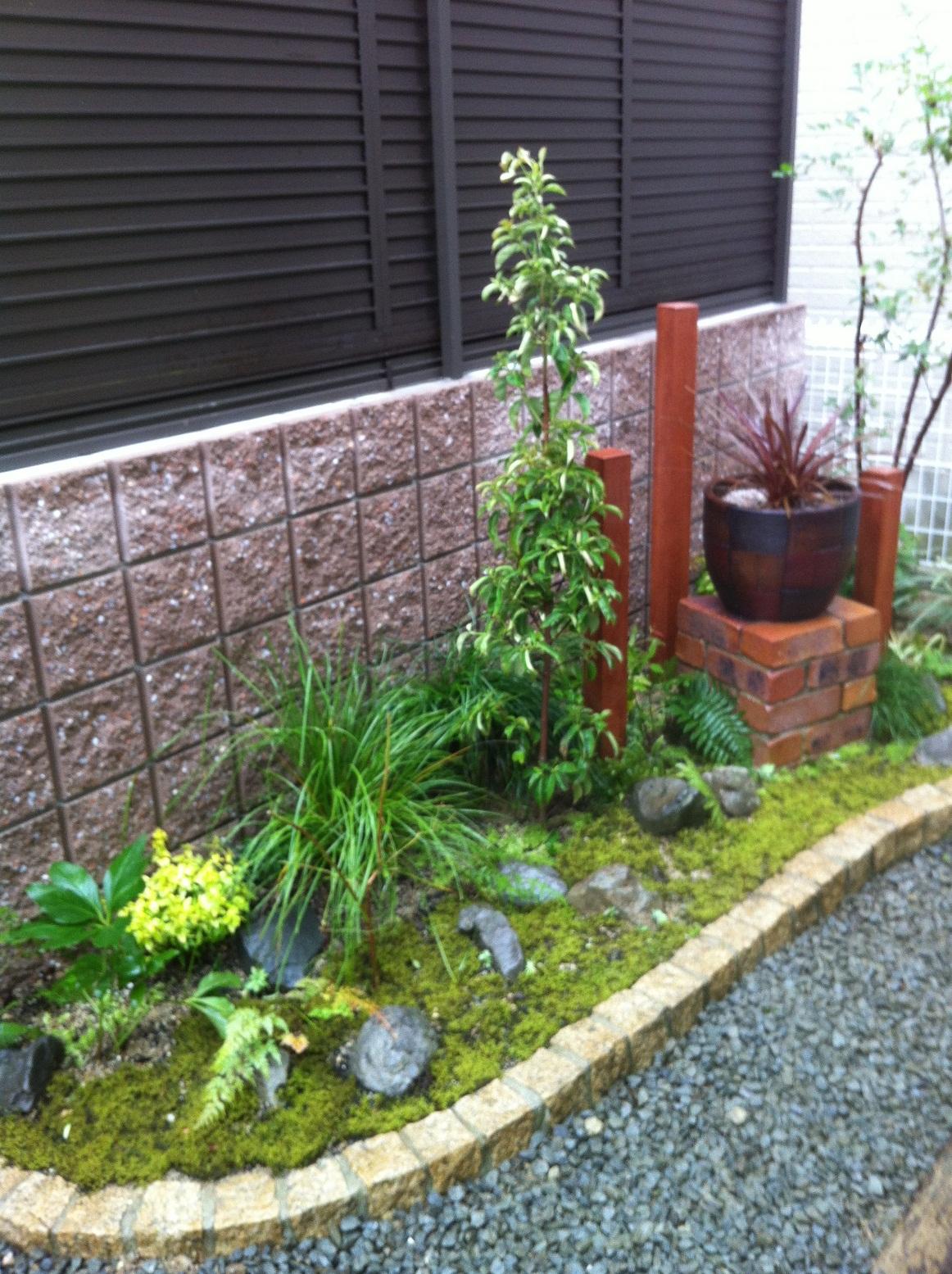 植栽例 常緑ヤマボウシ