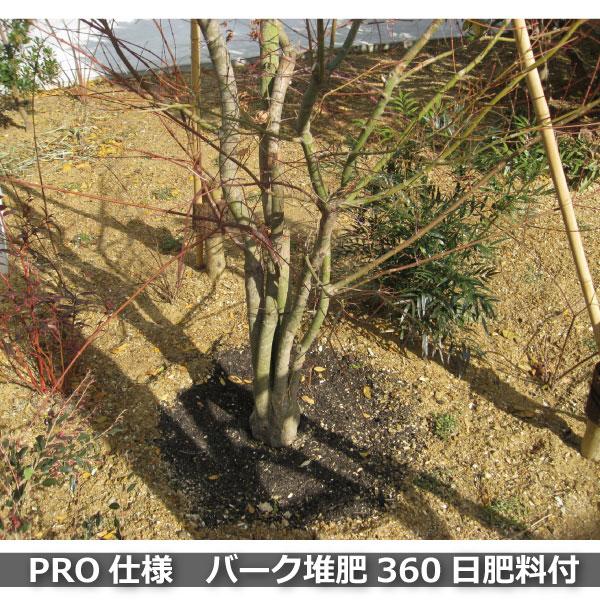 バーク堆肥で土壌改良はカンタンにできます